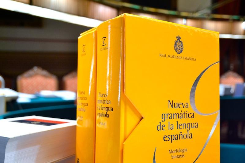 nueva gramatica española pdf